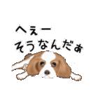 動く!キャバリア(個別スタンプ:19)
