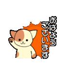 【日常用】行動猫スタンプ(個別スタンプ:01)