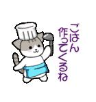 【日常用】行動猫スタンプ(個別スタンプ:11)