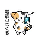 【日常用】行動猫スタンプ(個別スタンプ:15)