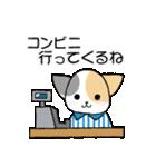 【日常用】行動猫スタンプ(個別スタンプ:17)