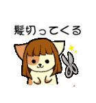 【日常用】行動猫スタンプ(個別スタンプ:19)