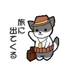 【日常用】行動猫スタンプ(個別スタンプ:26)