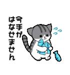 【日常用】行動猫スタンプ(個別スタンプ:29)