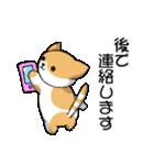 【日常用】行動猫スタンプ(個別スタンプ:30)