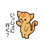 【日常用】行動猫スタンプ(個別スタンプ:31)