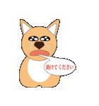 子犬で、メッセンジャー(個別スタンプ:01)