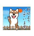大人春柴っち(敬語編)(個別スタンプ:1)