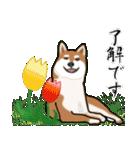 大人春柴っち(敬語編)(個別スタンプ:16)