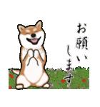 大人春柴っち(敬語編)(個別スタンプ:19)