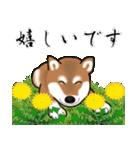 大人春柴っち(敬語編)(個別スタンプ:29)