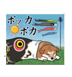 大人春柴っち(敬語編)(個別スタンプ:32)