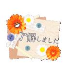 大人のお洒落なマナー敬語(個別スタンプ:01)