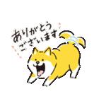 しばんばん <敬語>(個別スタンプ:01)