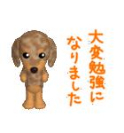 3D ダックスフレンズ(敬語版)(個別スタンプ:18)