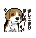 わんこ日和 ビーグル こいぬ vol.4 敬語(個別スタンプ:08)