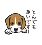 わんこ日和 ビーグル こいぬ vol.4 敬語(個別スタンプ:21)
