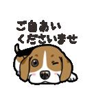 わんこ日和 ビーグル こいぬ vol.4 敬語(個別スタンプ:27)