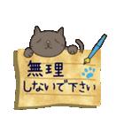 ~敬語で伝える~手紙ねこ【2】(個別スタンプ:03)