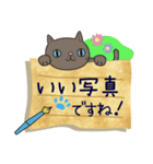 ~敬語で伝える~手紙ねこ【2】(個別スタンプ:31)