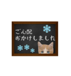 黒板で伝える敬語ネコ(個別スタンプ:11)
