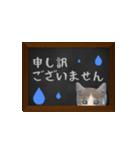 黒板で伝える敬語ネコ(個別スタンプ:12)