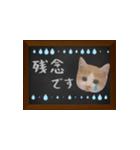黒板で伝える敬語ネコ(個別スタンプ:19)