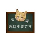 黒板で伝える敬語ネコ(個別スタンプ:23)