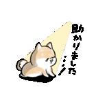 ほんわかしばいぬ<敬語>(個別スタンプ:14)
