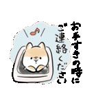 ほんわかしばいぬ<敬語>(個別スタンプ:24)