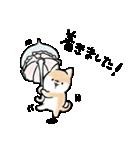 ほんわかしばいぬ<敬語>(個別スタンプ:30)
