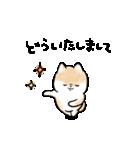 ほんわかしばいぬ<敬語>(個別スタンプ:35)