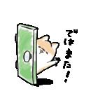 ほんわかしばいぬ<敬語>(個別スタンプ:37)