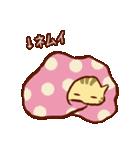 寝落ちにまつわるネコ