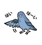 鳥と小動物(個別スタンプ:13)