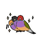 鳥と小動物(個別スタンプ:20)