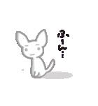 真っ白なフェネック  ふぇねっち君(個別スタンプ:19)