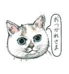 ヒグチユウコ せかいいちのねこ(個別スタンプ:30)