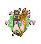 犬っぽさ全開のダックスたち(個別スタンプ:01)