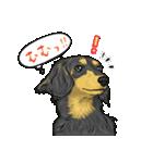 犬っぽさ全開のダックスたち(個別スタンプ:06)