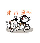 ちゃしろぶさへたねこ茶輔(さすけ)(個別スタンプ:02)