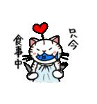 ちゃしろぶさへたねこ茶輔(さすけ)(個別スタンプ:12)