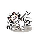 ちゃしろぶさへたねこ茶輔(さすけ)(個別スタンプ:16)