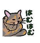 大好き みみぃ♡(個別スタンプ:06)