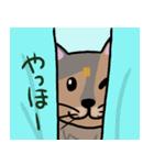 大好き みみぃ♡(個別スタンプ:11)
