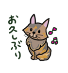 大好き みみぃ♡(個別スタンプ:27)