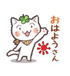 猫と四つ葉のクローバー 6(関西弁)(個別スタンプ:1)