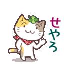 猫と四つ葉のクローバー 6(関西弁)(個別スタンプ:13)