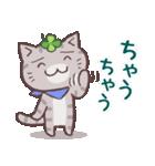 猫と四つ葉のクローバー 6(関西弁)(個別スタンプ:17)