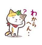 猫と四つ葉のクローバー 6(関西弁)(個別スタンプ:27)